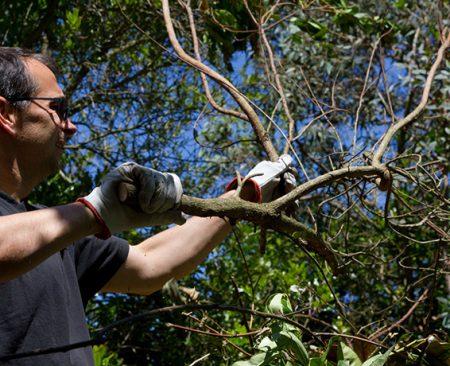 Jardinage entretien espaces verts ext rieurs for Tva entretien espaces verts 2016