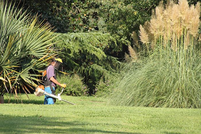 Environnement et espaces verts la main forte for Association entretien espaces verts